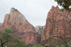 Zion National Park Stockbilder