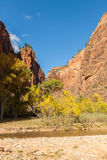 Zion National Park in Autumn Stock Photography