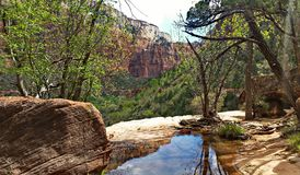 Zion National Park. Beautiful view from the Emerald Pools hiking trail. Zion National Park, Utah Stock Photo