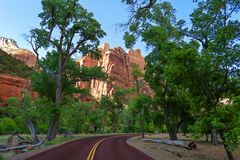 Zion National Park, California. Royalty Free Stock Image