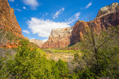 Zion National Park Canyon Lizenzfreies Stockbild