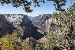 Zion National Park Canyon View fotografering för bildbyråer