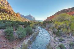 Zion National Park Fall Royaltyfria Bilder