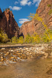Zion National Park Fall Scenic Royalty Free Stock Image
