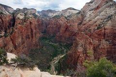 Zion National Park från att landa för änglar Fotografering för Bildbyråer