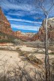 Zion National Park i vinter efter högt vatten, Utah Royaltyfria Bilder
