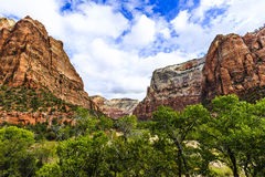 Zion National Park. This image was captured at Zion National Park.  Mountains towered over the canyon floor.  This photograph was taken in the autumn Royalty Free Stock Photos