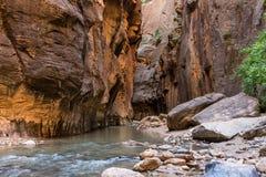 Zion National Park incroyable, la rivière de Vierge traversant les étroits images stock