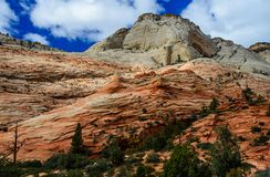 Zion National park. Landscape scenery of Zion National Park in southwest Utah Royalty Free Stock Image