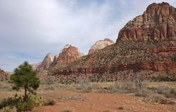 Zion National Park Landscape Royalty Free Stock Photo