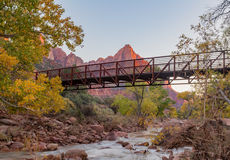 Zion National Park na queda Fotografia de Stock Royalty Free