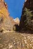 Zion National Park Narrows nella caduta immagini stock