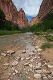 Zion National Park Narrows-sleep, Utah royalty-vrije stock foto
