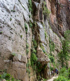 Zion National Park Narrows Trail Stock Photography