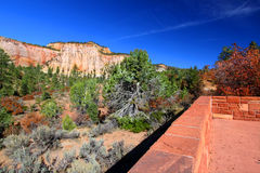 Zion National Park Overlook Stock Image