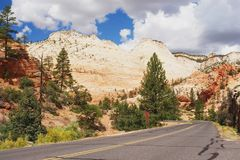 Zion National Park. Road leading through Zion National Park, Utah Royalty Free Stock Images