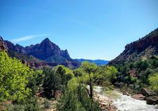 Zion National Park royalty free stock photography