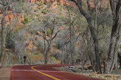 Zion National Park road (Utah, USA) Stock Images