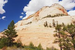 Zion National Park. The rock formation in Zion National Park, Utah Stock Images