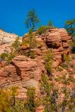 Panoramic View of Zion National Park, Utah. Royalty Free Stock Photos