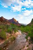 Zion National Park summer mountain landscape with flowing river. Zion National Park summer landscape view of Watchman peak and Virgin River flowing in the royalty free stock photo