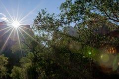 Zion National Park Sunset Imagen de archivo libre de regalías