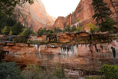 Zion National Park Trail Stock Image
