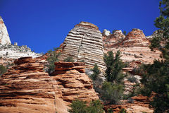 Zion National Park, USA Royalty Free Stock Image