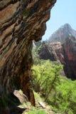 Zion National Park, USA Stock Image