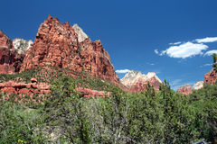 Zion National Park, USA Stock Image