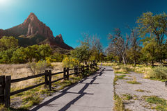Zion National Park, USA Royalty Free Stock Photo