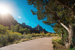 Zion National Park, USA Royalty Free Stock Photography