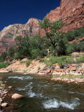 Zion National park Utah. With water running in the creek Stock Photo