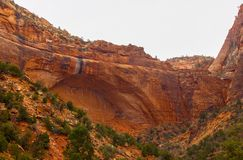 Zion National Park-Utah fotografie stock