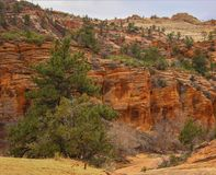Zion National Park-Utah imágenes de archivo libres de regalías