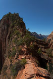 Zion National Park in Utah Royalty Free Stock Image