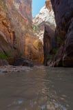 Zion National Park in Utah Stock Image