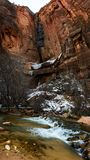 Zion National Park in Utah. Inside canyon in Zion National Park in Utah, USA Stock Photos