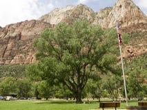Zion National Park In Utah los E.E.U.U. Foto de archivo libre de regalías