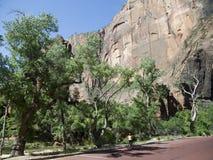 Zion National Park In Utah los E.E.U.U. Fotografía de archivo