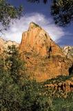 Zion National Park Utah Mountain-Scène stock afbeeldingen