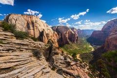 Zion National Park Utah, perspektivlandskap i höst Royaltyfria Bilder
