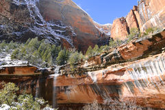 Zion National Park (Utah, Usa) Stock Images