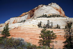 Zion National Park, Utah, Royalty Free Stock Images