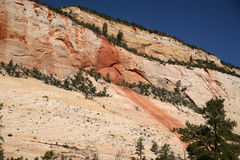 Zion National Park, Utah, Royalty Free Stock Photography