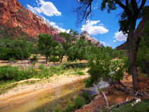 Zion National Park Utah, USA Royaltyfria Bilder