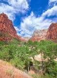 Zion National Park Utah, USA Fotografering för Bildbyråer