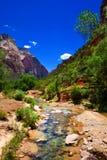 Zion National Park,Utah, USA Stock Photos