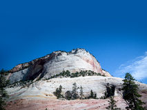 Zion National Park In Utah USA Stock Photos