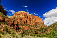 Zion National Park in Utah, USA. Royalty Free Stock Photo